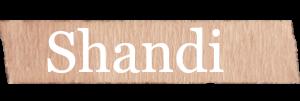 Shandi Girls Name
