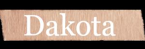 Dakota Boys Name
