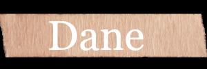 Dane Boys Name