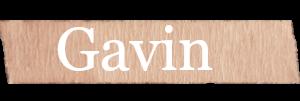 Gavin Boys Name