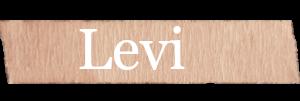 Levi Boys Name